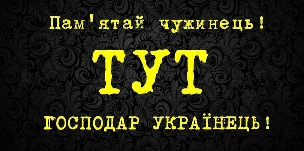 Президент Эстонии считает, что Украина может стать пионером в проведении реформ во время войны - Цензор.НЕТ 226