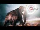 Алексей Тихонов: Загадки мамонта (СПБ)