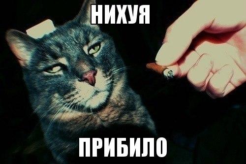 молодой виталя джа: