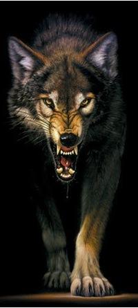 Wolf Hell, 19 декабря , Улан-Удэ, id210888704