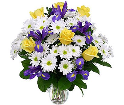 Цветы оптом розы тюльпаны гвоздики
