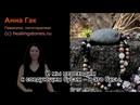Лечебные и магические свойства камней: полный курс от Анны Гак