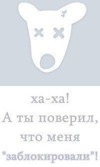 Лера Хачкинаева, 31 октября , Ростов, id155198895