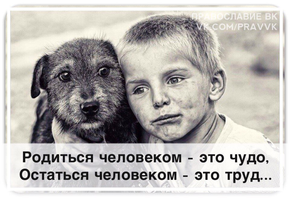pp.userapi.com/c543108/v543108657/29e8a/2zjarsKOJIY.jpg
