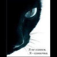 Анкета Дмитрий Мануев
