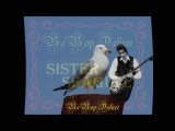 BE BOP DELUXE- SISTER SEAGULL