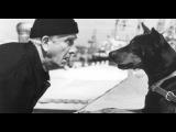 «Голый пистолет 2 1/2: Запах страха» (1991): Трейлер №2 (русский язык) / Официальная страница http://vk.com/kinopoisk