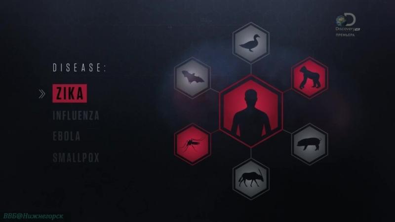 Discovery «Вирус: Невидимые убийцы (1). Оспа» (Научно-познавательный, биология, 2017)