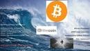 Круизер Crownline 270 CR(дизель),обзор. Купить/Продать, Bitcoin(биткоин),ethereum(эфириум).