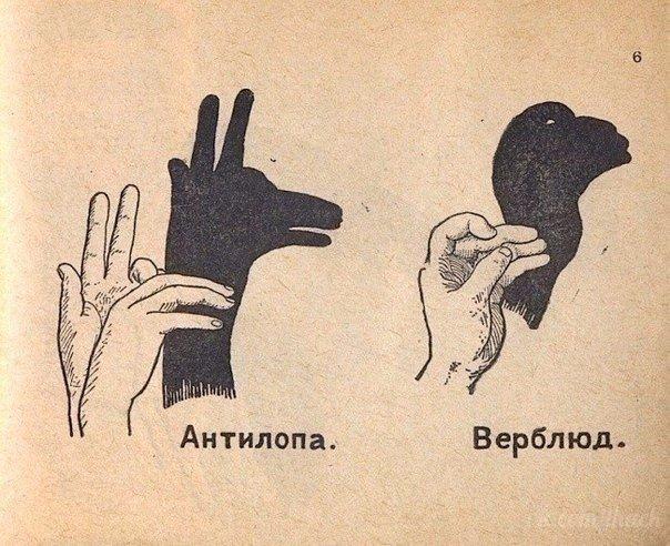 Фото №456248636 со страницы Богдана Ахметзянова