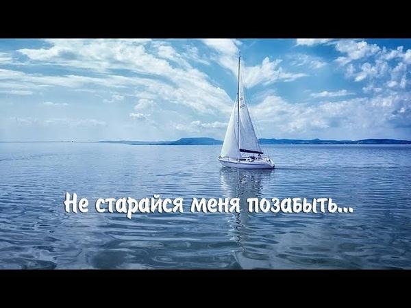 НЕ СТАРАЙСЯ МЕНЯ ПОЗАБЫТЬ...Ролик Елены Ручьевой