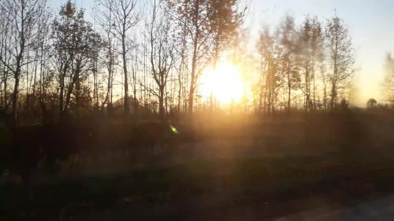 Утренняя поездка
