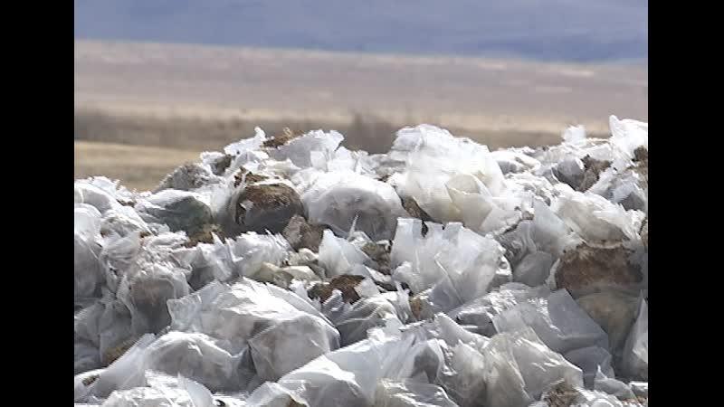 В пригороде Улан-Удэ жители жалуются на мусор китайских теплиц