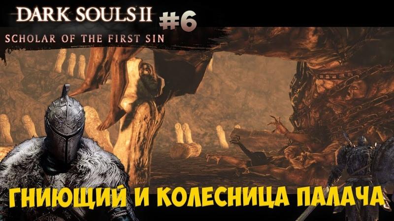 Вторжения! Черная расселина и Гниющий. Колесница Палача и Братство Крови (Dark Souls 2: SotFS) [6]