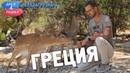 Греция Орёл и Решка Перезагрузка 3 English subtitles