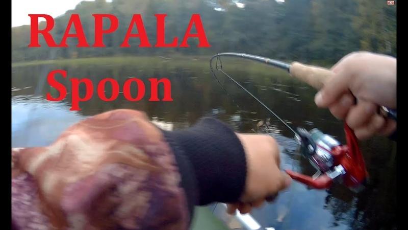 Осенью за щукой Щука на воблеры Rapala Spoon незацепляйка
