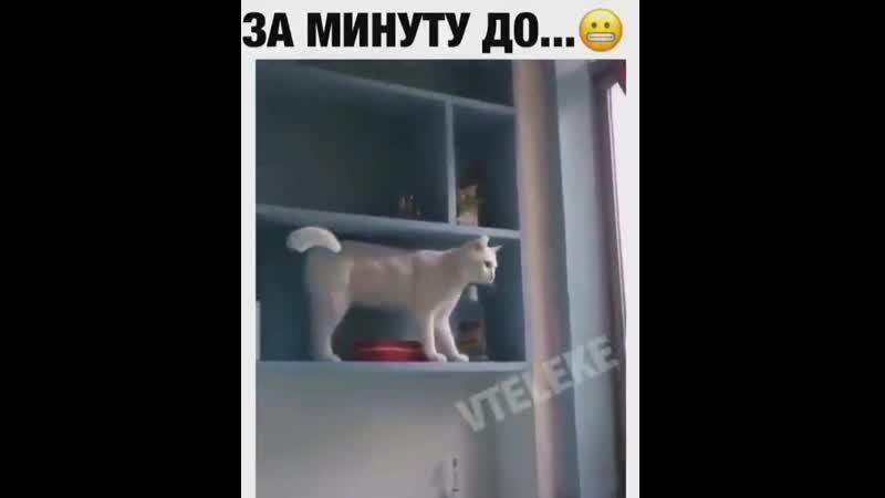 Засранец