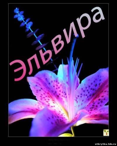 Красивая открытка, красивые открытки с именем эльвира