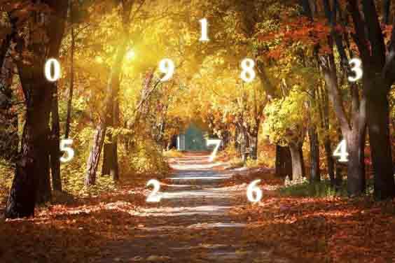 Нумерология Сентября 2018:точный прогноз на месяц по дате рождения