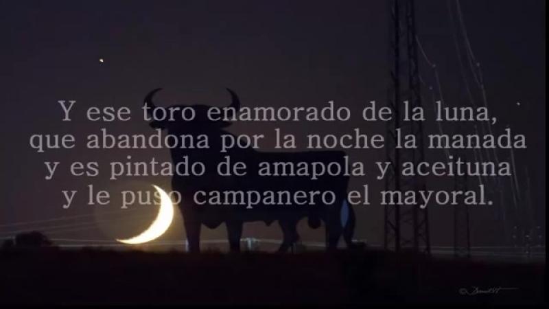Gipsy Kings El toro y la Luna (con letras)
