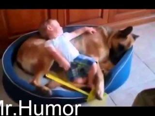 Самое смешное видео про детей и животных 2014!!!Малыши отжигают!!!funny kids 2014!!!