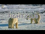 Первобытный бойцовский клуб / The Original Fight Club