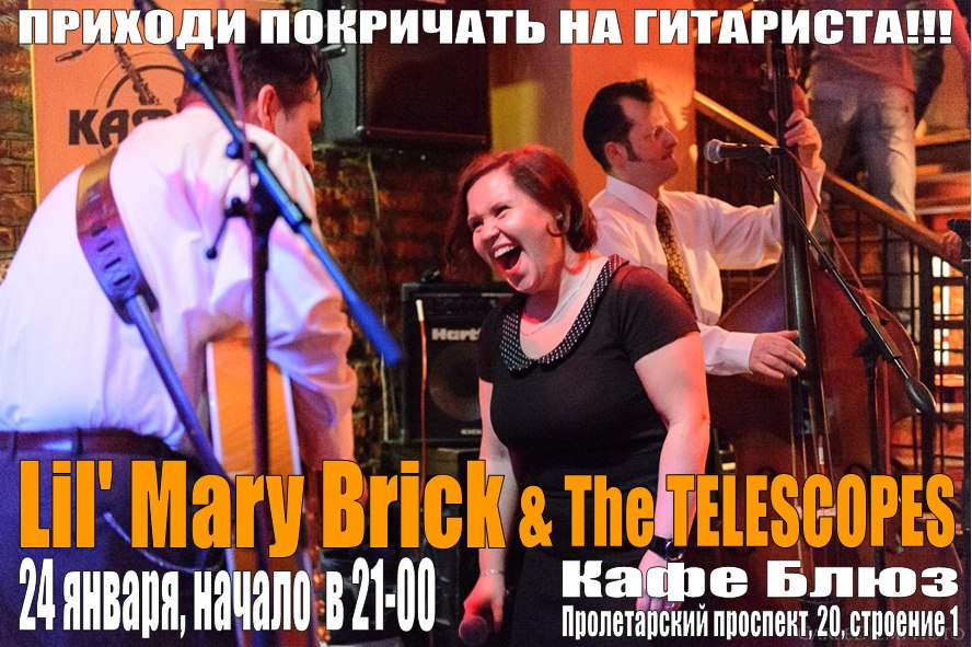 22.01 The Telescopes и Lil' Mary Brick в кафе Блюз!