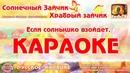 Караоке - Солнечный зайчик   Храбрый   Детское Караоке   Детские Песни Для Детей