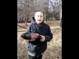 Открываем лимонад по русски!