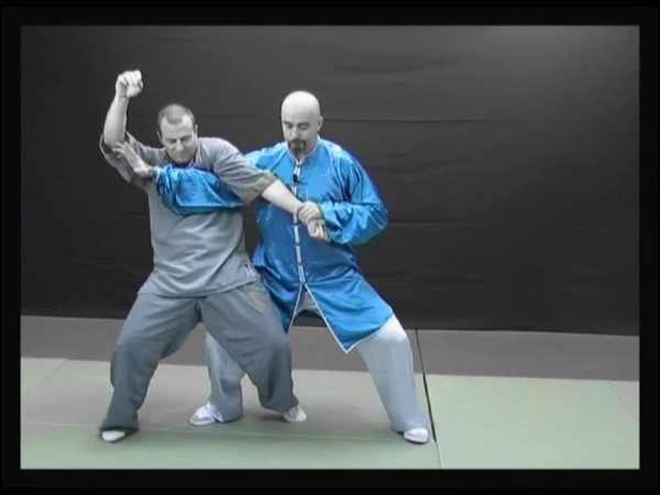 Taiji Quan style Chen vol.5 Applications martiales