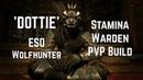 'Dottie' | Stamina Warden PVP Build | ESO Wolfhunter