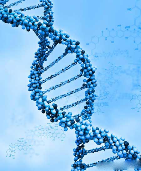 ДНК, которая была изменена мутагенами, может вызвать множество проблем со здоровьем.