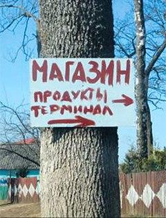Неманские вести: Пожалейте деревья