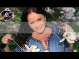 София Ротару - Я ж его любила (+Мелодия) (Своё Караоке)