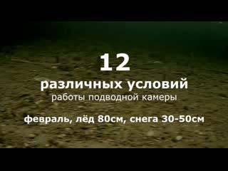 12 условий съёмки подводной камерой для рыбалки. не ведитесь на рекламу!