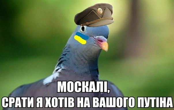 Россия регулярно устраивает провокации у границ стран Балтии, - СМИ - Цензор.НЕТ 7701