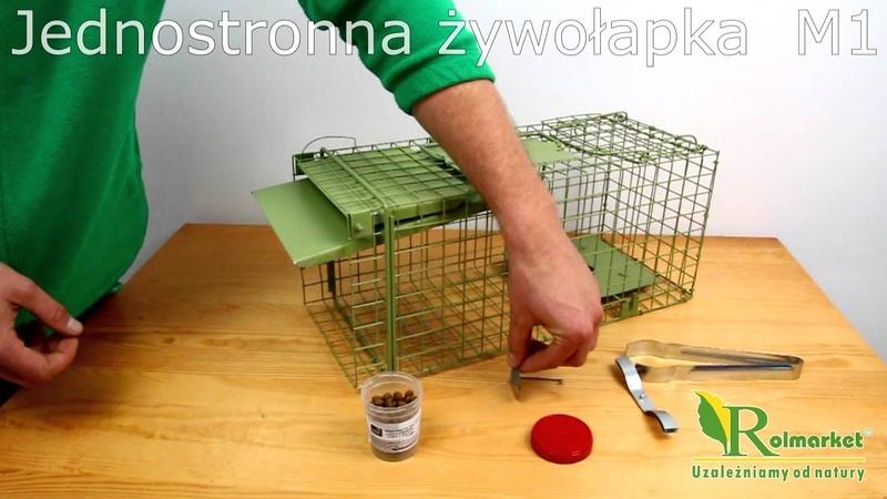 Jak działa jednostronna żywołapka M1 na kuny, łasice, szczury, drobne gryzonie | Rolmarket.pl