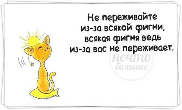 https://pp.vk.me/c619116/v619116400/37f0/nHK_2V8-TDU.jpg
