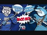 LIVE! «Снежные Барсы» - «Сибирские Снайперы» (19.02 – 16:00)