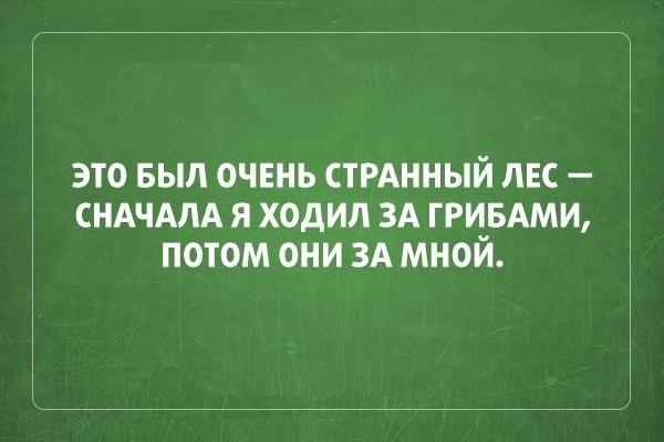 https://cs7058.vk.me/c7001/v7001039/14af0/4w1pwc-hRGc.jpg