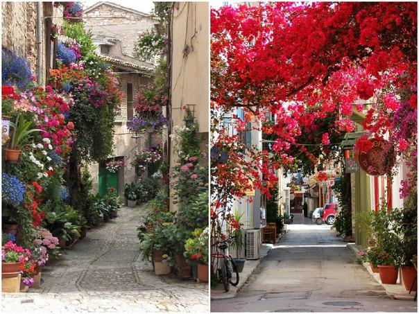 16 прекрасных улиц, расцветающих с приходом весны: ↪ Вот бы прогуляться там!