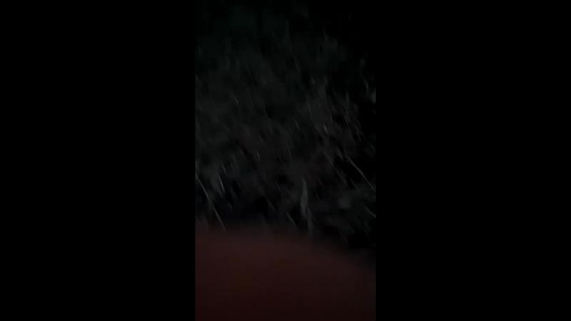 Алик Калачёв - Live