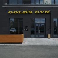Рисунок профиля (Golds Gym)
