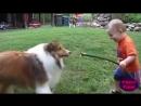 Дети и животные. Прикольное видео про детей и животных. 360 X 640 .mp4