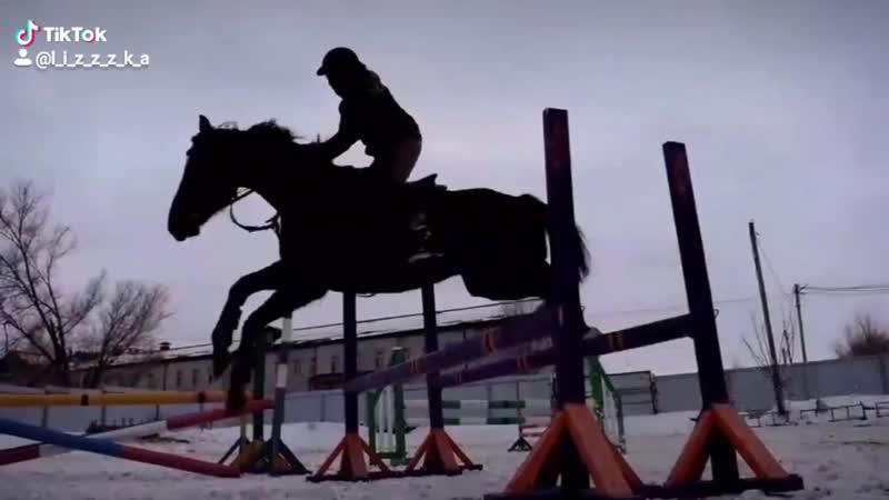 Прыжковая Бамбук