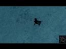 Enya - May It Be (darkon's Secret Edit) ALIMUSIC VIDEO