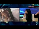 Алексей Панин трахает собаку