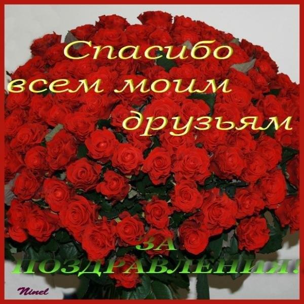 http://cs421725.userapi.com/v421725206/88a2/xEDxGpx1W9U.jpg