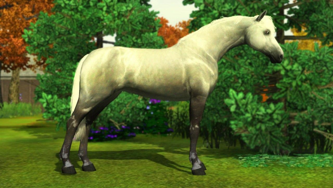 Заявки на удаление лошади из списка - Страница 2 CR8YAmq6s6s