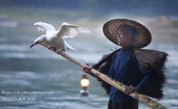 Счастливые люди не всегда имеют все самое лучшее, просто они принимают с радость...